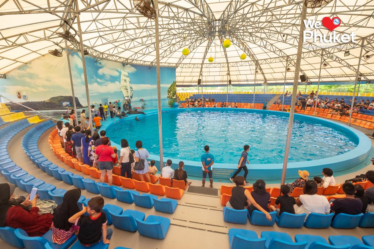 Dolphin Bay Phuket Show - Phuket E Magazine