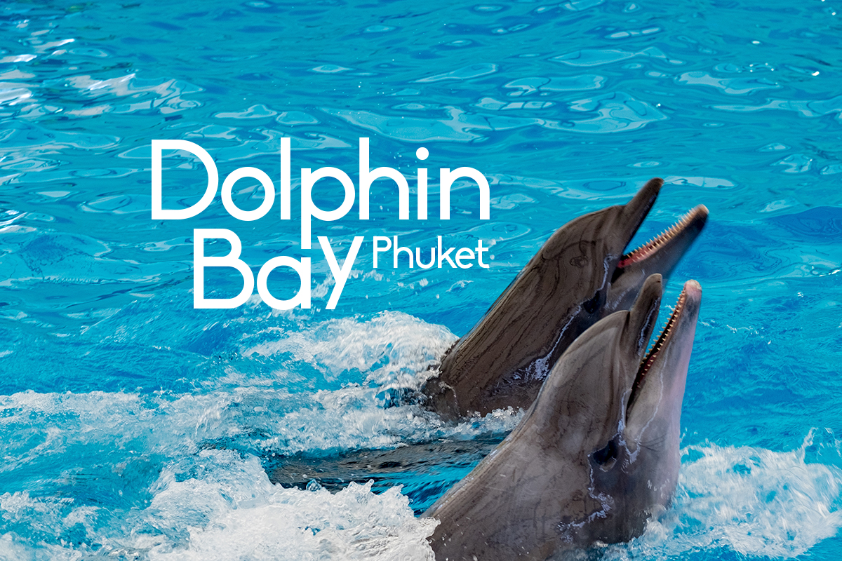 Dolphin Bay Phuket - Cover Photo - Phuket E Magazine