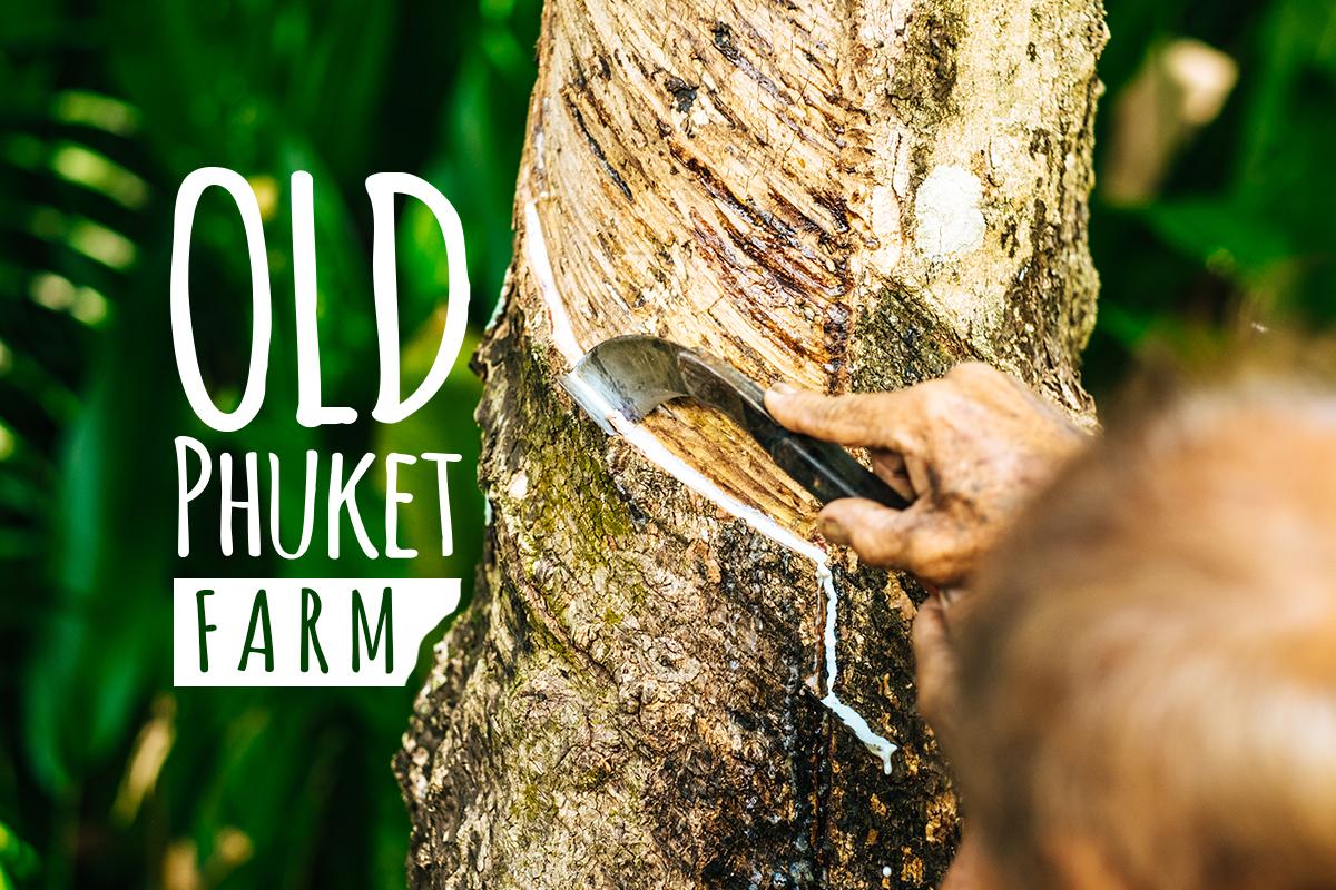 old phuket farm-1